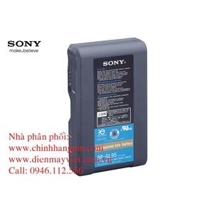 Pin (battery) máy quay Sony BPGL95A Graphite Lithium-Ion chính hãng original