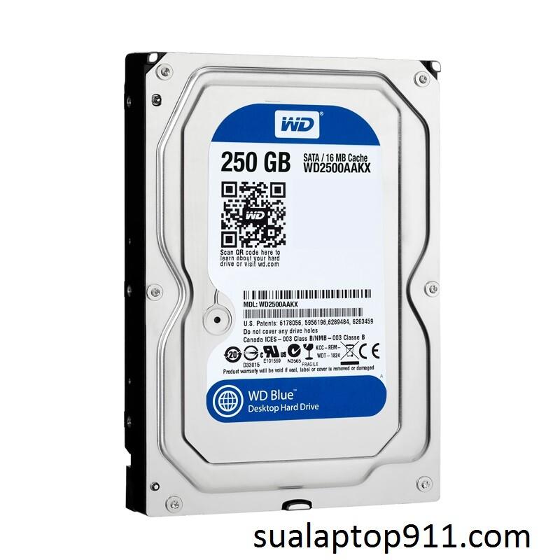 Ổ HDD máy tính PC 250GB WD (12t)