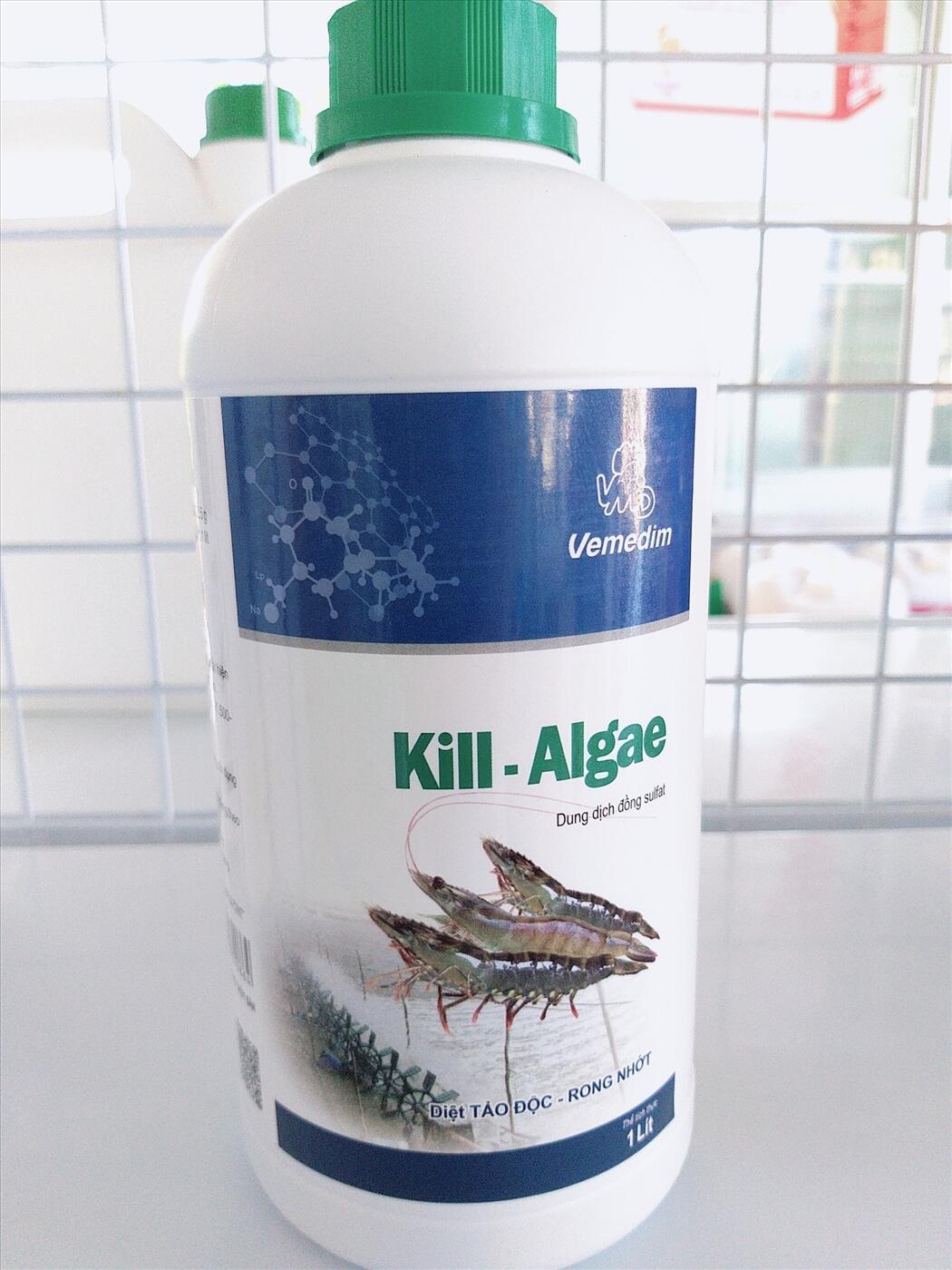 KILL ALGAE