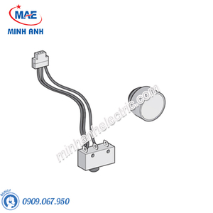 ACB Masterpact NW & Phụ Kiện - Model 48534-Electrical auxiliaries-FIXED, Electrical closing button