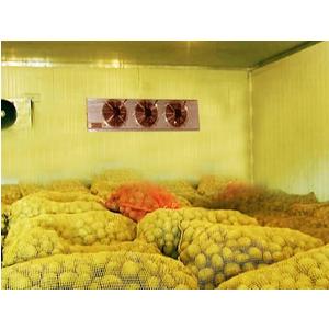 Lắp đặt kho lạnh bảo quản hạt giống