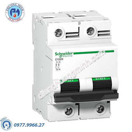 Acti9 C120N MCB 2P 80A 10kA - Model A9N18361