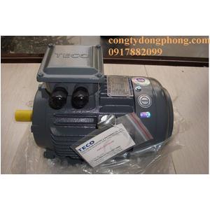 Động cơ điện TECO AESV