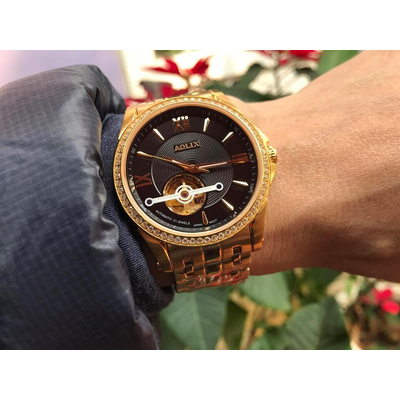 Đồng hồ nam tự động chính hãng Aolix al 3017g - mkd