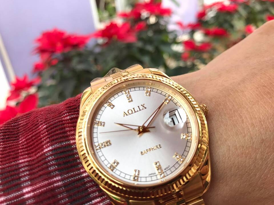 Đồng hồ nam chính hãng Aolix al 9145g - mkt