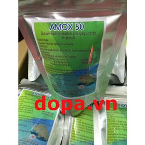 AMOX50 - THUỐC ĐẶC TRỊ BỆNH NHIỄM KHUẨN TRÊN ẾCH