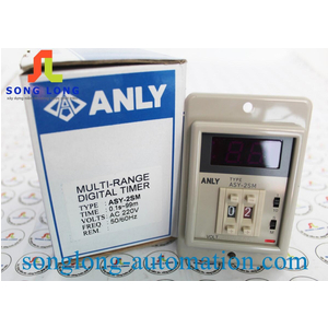 TIMER ANLY ASY-2SM