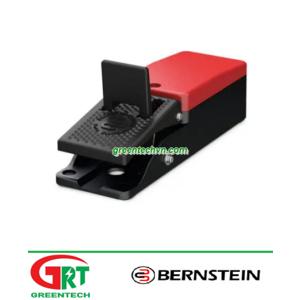 AT series | Bernstein AT series | Công tắc chân | Control foot switch | Bernstein Vietnam