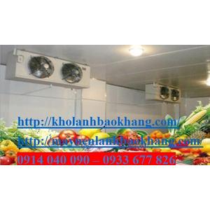 Lắp đặt kho lạnh bảo quản rau quả