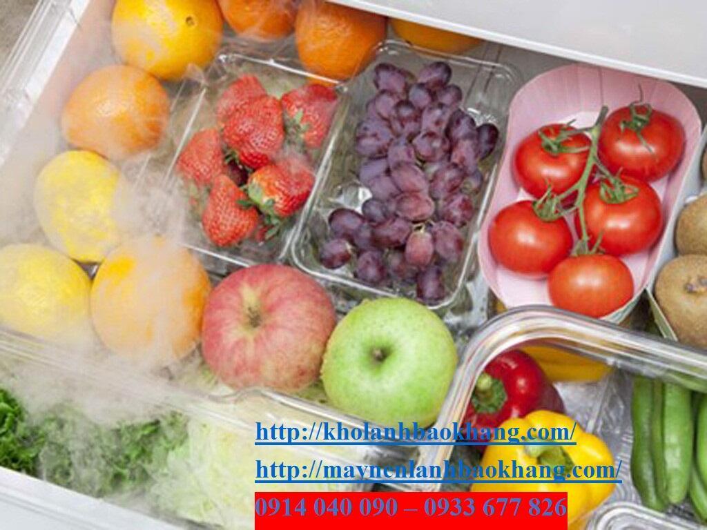 Lắp đặt kho lạnh bảo quản trái cây