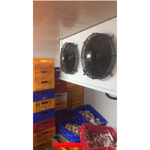 Lắp đặt kho lạnh bảo quản gia cầm