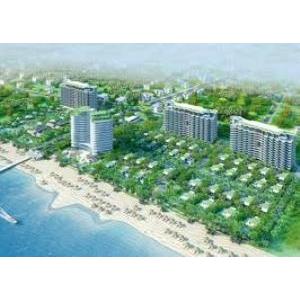 Bán Đất Mặt Tiền MT Đường Hoa Cúc P2 Quận Phú Nhuận 4x16m