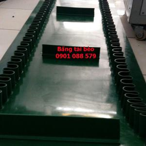 Băng tải dán gờ bèo - băng tải bèo - băng tải thực phẩm