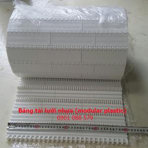Băng tải modular plastic (HS100A)