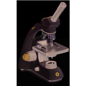 Kính hiển vi sinh học 1 mắt - BB.4200 - BioBlue - Euromex - Hà Lan