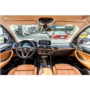 BMW X3 xDrive30i xLine