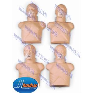 Bộ 4 mô hình sơ cấp cứu bán thân người lớn loại cơ bản