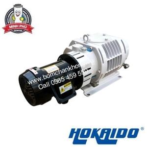 BƠM HÚT CHÂN KHÔNG PISTON HOKAIDO RV0300C