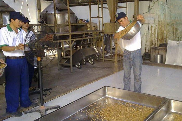 Cà phê chồn là gì? Cafe chồn giá bao nhiêu? Cách làm cà phê chồn?