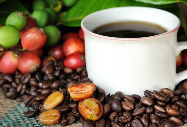 Cafe hòa tan loại nào ngon nhất, thơm nhất?