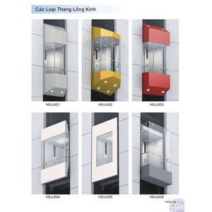 Các loại thang máy lồng kính