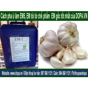 Cách Pha ủ làm chế phẩm EM5 và EM Tỏi Từ Chế Phẩm EM1 hay EM gốc