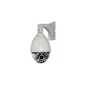 Camera IP Speed Dome VANTECH VP-4563