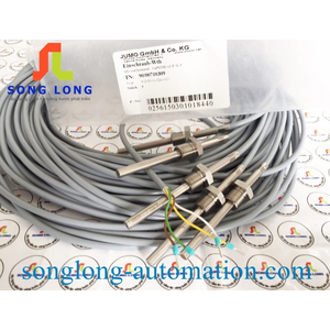 CAN NHIỆT PT100 JUMO 902050/10