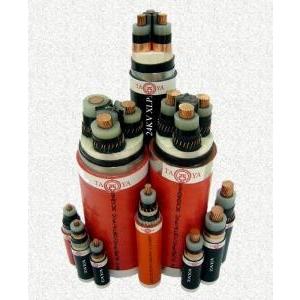 Cáp cách điện XLPE, vỏ bọc PVC 3.6/6 (7.2) KV
