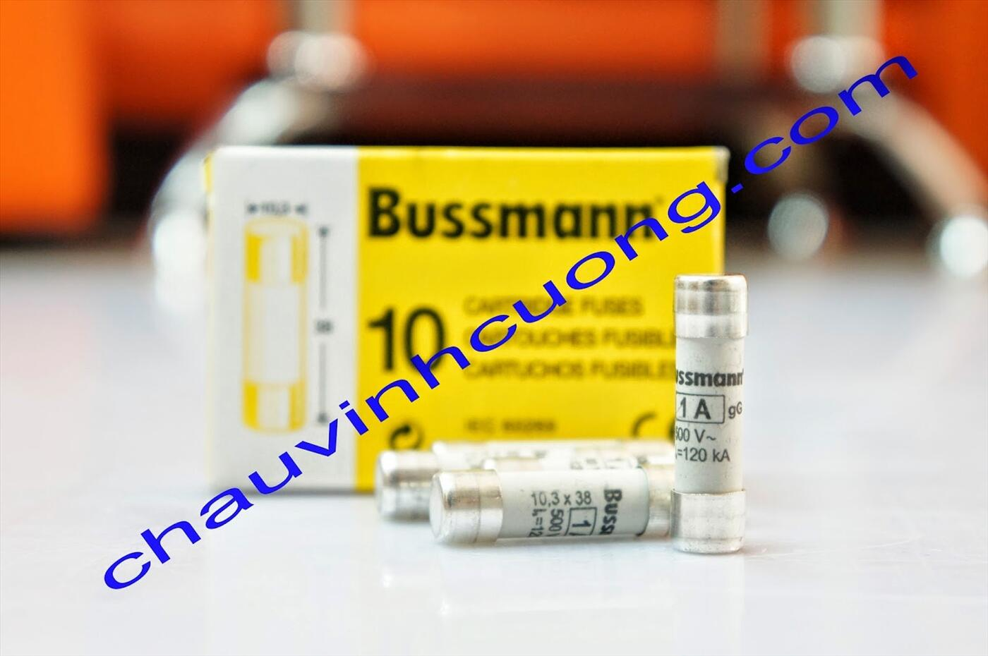 Cầu chì Bussmann C10G1