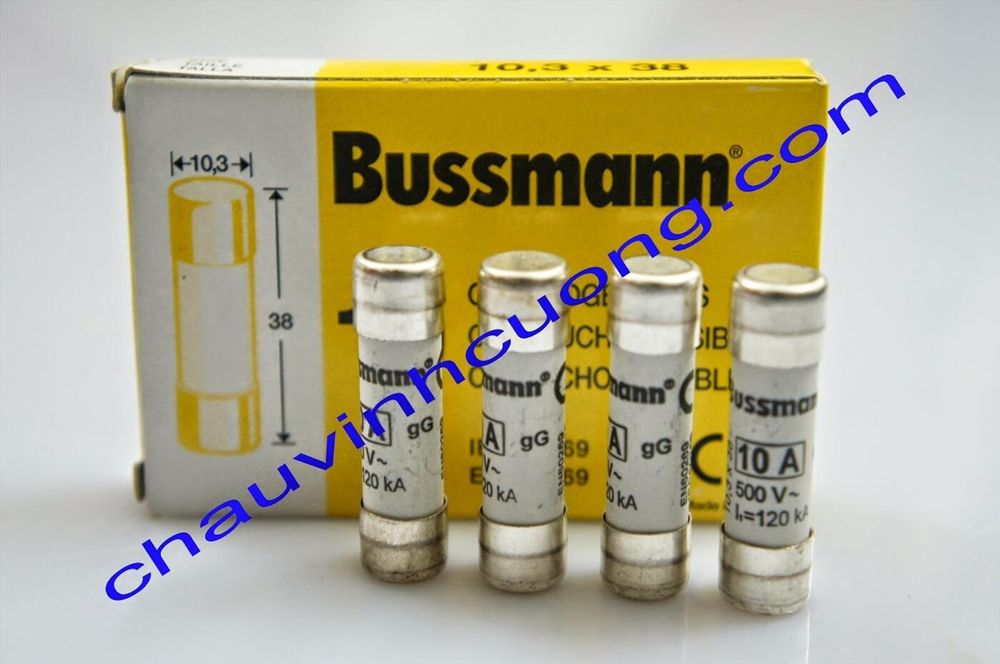Cầu chì Bussmann C10G10