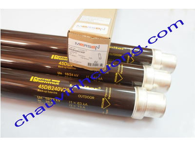 Cầu chì trung thế 24kV 20A Ferraz Shawmut 45DB240V20P