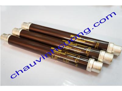 Cầu chì trung thế 24kV 25A Ferraz Shawmut 45DB240V25P