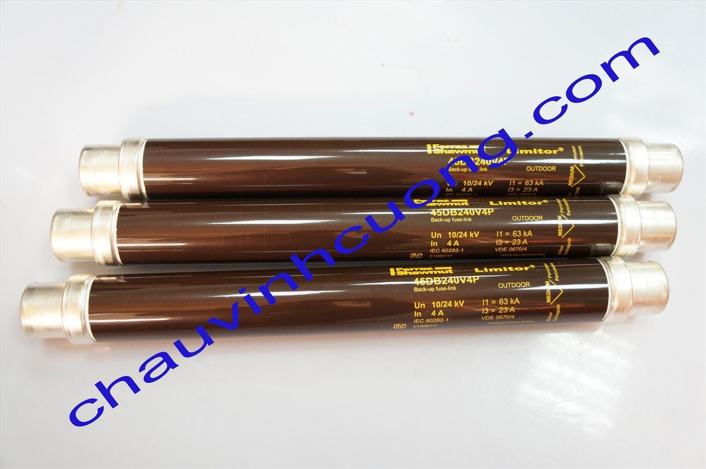 Cầu chì trung thế 24kV 4A Ferraz Shawmut 45DB240V4P