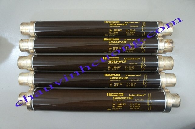 Cầu chì trung thế 24kV Ferraz Shawmut 45DB240V50P