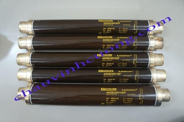 Cầu chì trung thế 24kV Ferraz Shawmut 445DB240V63P
