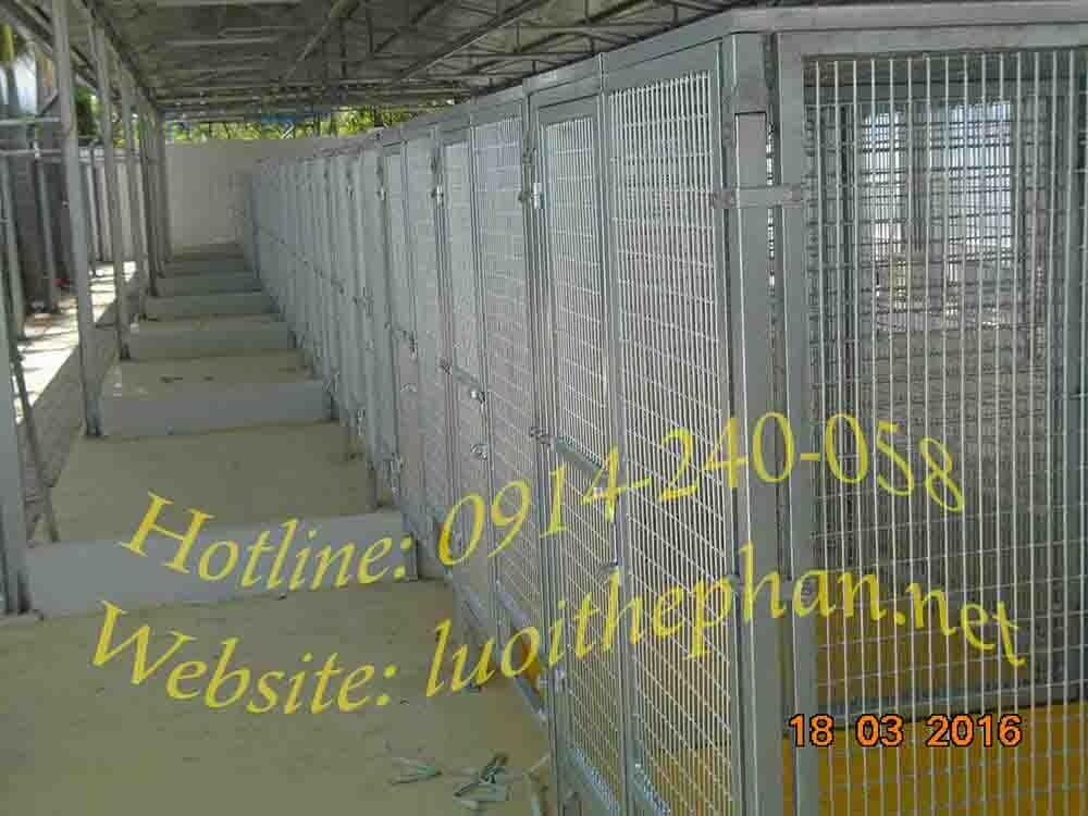 Thi công chuồng lưới thép trại huấn luyện chó