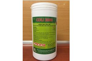 COLI 2000