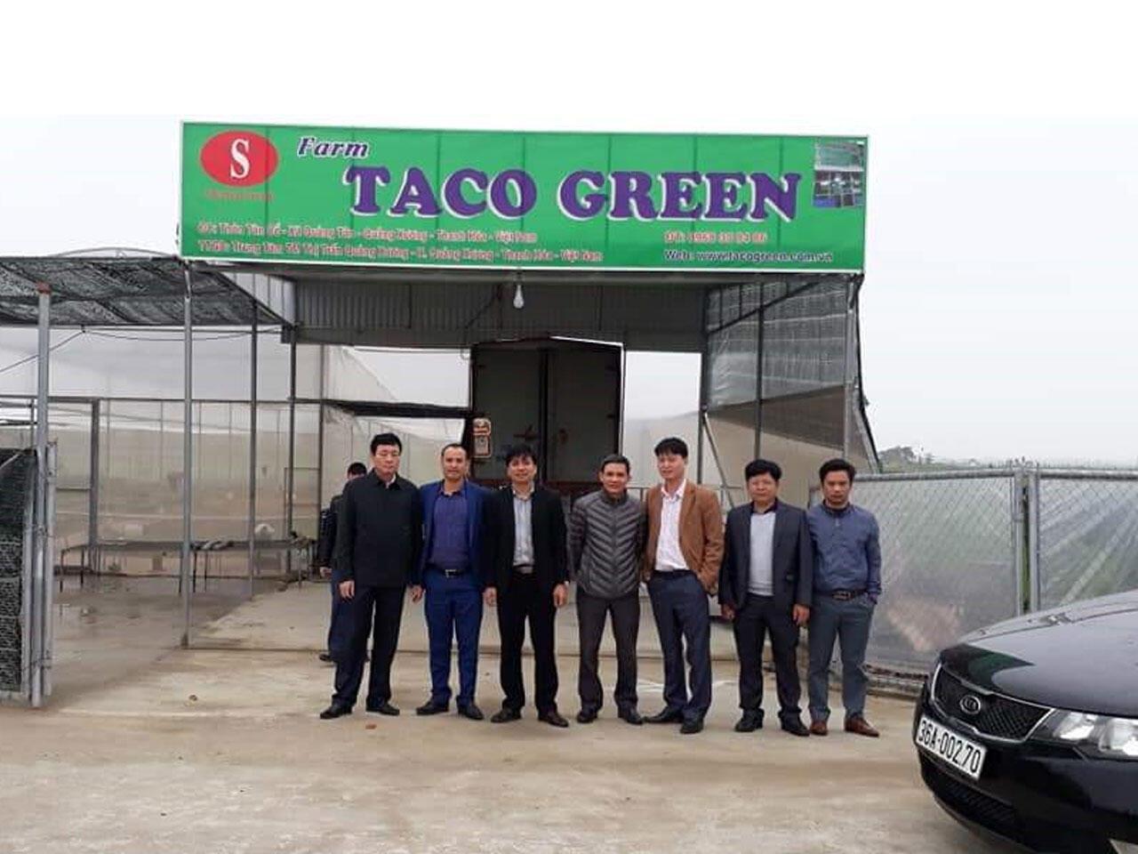 Công Ty Taco Green Hình 4