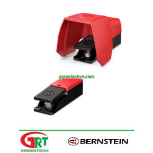 D series | Bernstein D series | Công tắc chân | Control foot switch D series | Bernstein Vietnam