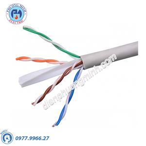 Dây cáp mạng FTP - Model NC5E-F100P