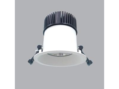 Đèn Downlight Chống Thấm MPE 20W