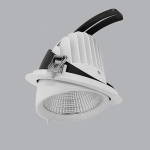 Đèn Downlight Điều Chỉnh MPE 35W