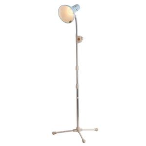 Đèn gù thường 1m7 TNE