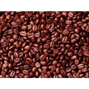 Địa chỉ cung cấp và phân phối cà phê hạt nguyên chất ở đâu