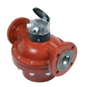 Đồng hồ đo lưu lượng Model VZFA 25