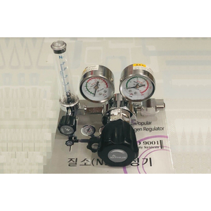 Đồng hồ N2 Whithus X700