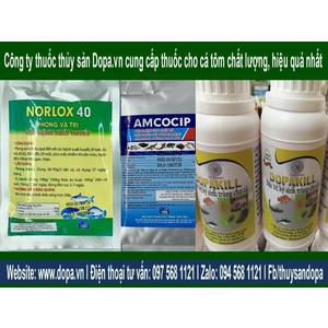 Dopa.vn Công Ty Thuốc Thủy Sản Với Bảng Giá Thuốc Cho Cá Tôm Tốt Nhất