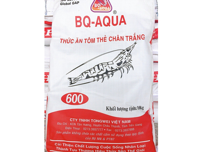BQ -600