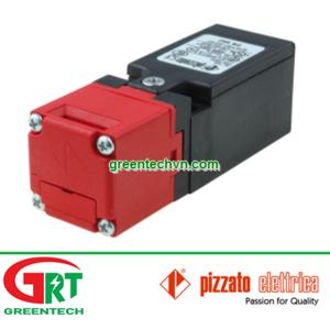 FR2093-D1 | Công tắc cửa an toàn | Pizzato VietNam